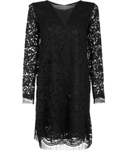 Adam Lippes | Lace Shift Dress Womens Size 8 Cotton