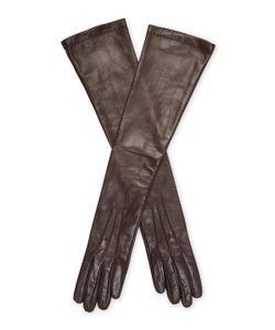 JANE CARR | The Slender Long Glove
