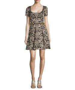 Marchesa Notte | Embroide Scoopneck Fit And Flare Dress