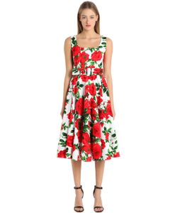 Samantha Sung | Print Stretch Cotton Dress