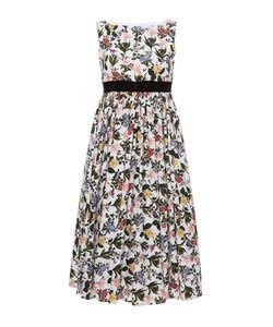 Vivetta | Printed Svasso Maggiore Garden Poplin Dress