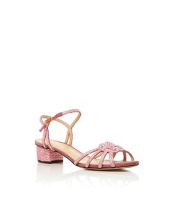 Charlotte Olympia | Its Knot You Its Me Sandal