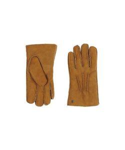 UGG Australia | Accessories Gloves Women On