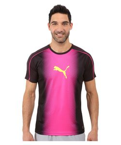 Puma | It Evotrg Cat Graphic Tee /Pink Glo Mens T