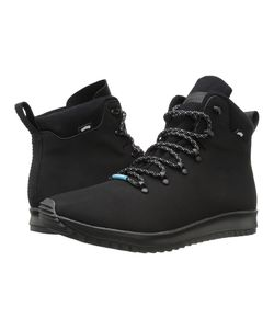 Native Shoes | Apollo Apex Jiffy Shell Jiffy Rubber Lace-Up