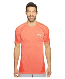 Puma | Evoknit Better Tee High Risk T Shirt