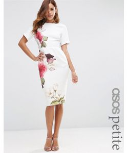 ASOS Petite   Wiggle Dress With Rose Placement Print