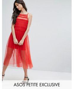 ASOS Petite   Bright Mesh Midi Dress