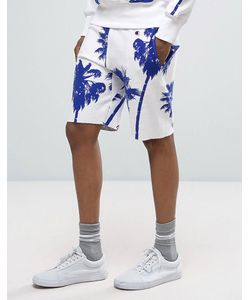 Champion | Shorts With All Over Palm Print