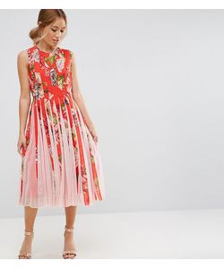 ASOS Petite   Mesh Insert Fit And Flare Midi Dress