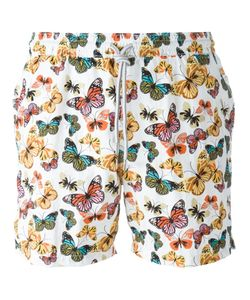 Capricode   Butterfly Print Swim Shorts