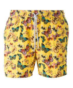 Capricode | Butterfly Print Swim Shorts