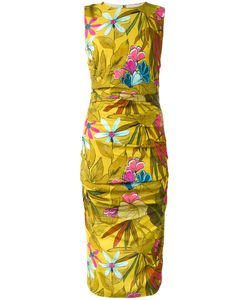 Eggs   Print Fitted Dress
