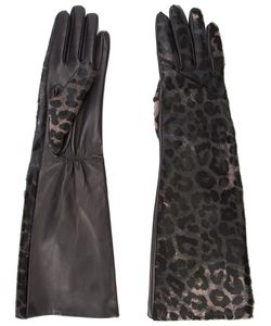 Perrin Paris | Leopard Print Gloves Size 7.5