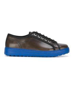 Salvatore Ferragamo | Fulton Sneakers 7.5