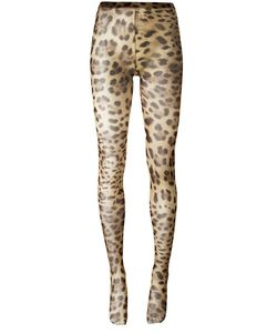 Dolce & Gabbana   Leopard Print Tights Large Polyamide