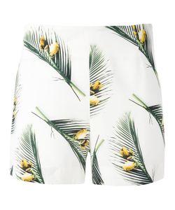 Cacharel | Leaf Print Shorts 34 Silk/Spandex/Elastane
