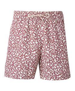 Loro Piana   Printed Swimming Shorts Size Xxl