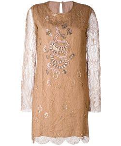 Ash | Ruby Lace Dress 38