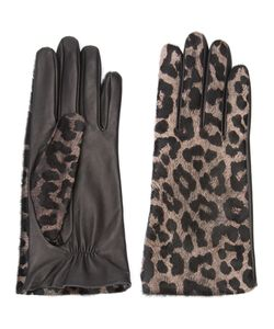 Perrin Paris | Leopard Gloves 7.5