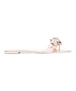Sophia Webster | Applique Flat Sandals