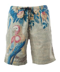 Dries Van Noten | Macaw Print Swim Shorts Size Large