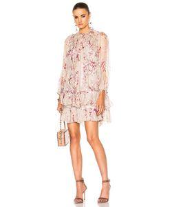 Zimmermann | Winsome Sphere Dress