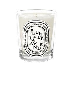 Diptyque   Feuille De Lavande Scented Candle.