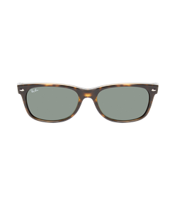 Ray-Ban | Tinted Wayfarer Frame