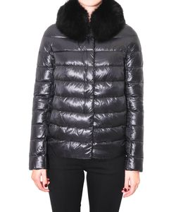 Herno | Down Jacket With Fur