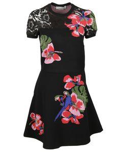Valentino   Embroidered Dress