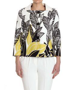 Herno | Cotton Jacket