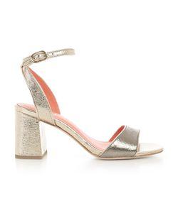 Ash | Shoes