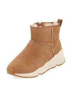 Ash | Miko Leather Bootie Sneaker