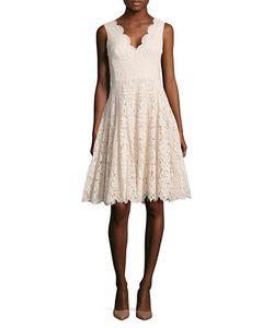 Vera Wang | Solid Scalloped Lace Dress