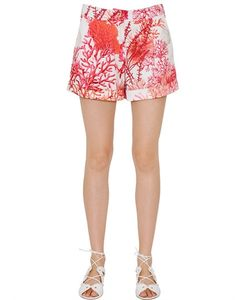 Blugirl | Coral Printed Cotton Satin Shorts