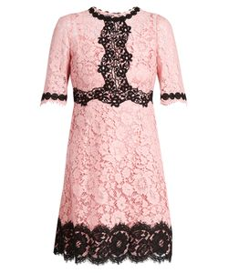 Dolce & Gabbana | Cordonetto-Lace Dress