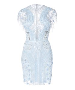 Zuhair Murad   Fringed Sleeve Illusion Mini Dress