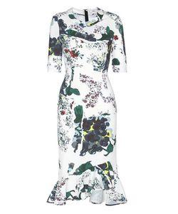 Erdem   Printed Dress