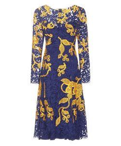 Oscar de la Renta | Embroidered Lace Dress