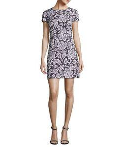 Michael Kors Collection | Lace Shift Dress