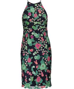 Badgley Mischka   Embroidered Lace Dress