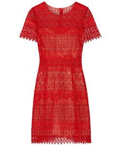 Marchesa Notte | Guipure Lace Mini Dress
