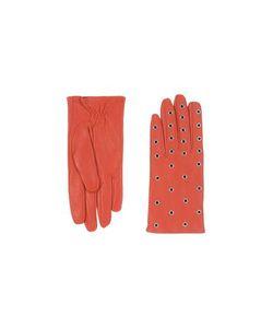 Sandro | Accessories Gloves On