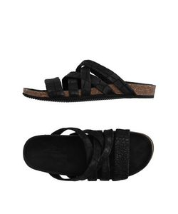 The Last Conspiracy | Footwear Sandals On